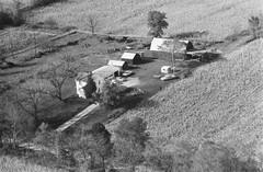 104-zhi-36