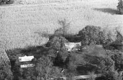 107-zhi-36
